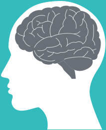 humanbrain-icon.png